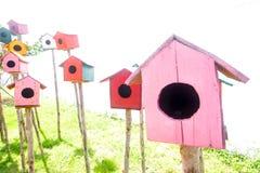 Красочная птица house иллюстрация штока