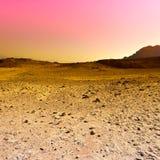 Красочная пустыня в Израиле Стоковые Фото
