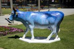 Красочная синь покрасила корову на садах Верховного Суда в Перте Cit Стоковые Изображения RF