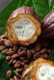Красочная сырцовая тема шоколада Стоковые Изображения RF