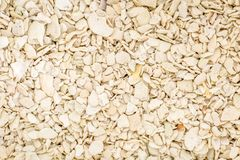 Красочная текстура макроса зерна песка от пляжа пляжа Флориды Стоковые Фотографии RF