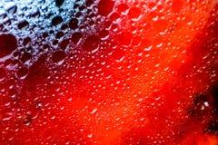 красочная текстура поверхности нерезкости масла темноты и тени стоковые фото