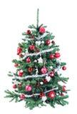 Красочная украшенная красная и серебряная рождественская елка Стоковые Фотографии RF