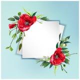 Красочная флористическая предпосылка с красивыми цветками Красные маки и листья Стоковые Фотографии RF