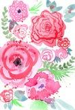 Красочная флористическая иллюстрация Стоковые Фото