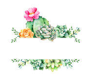 Красочная флористическая рамка с листьями, суккулентным заводом, ветвями и кактусом иллюстрация штока