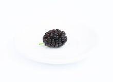 Красочная шелковица на белой предпосылке Стоковое Изображение