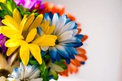 Красочное весеннее время цветет предпосылка Стоковая Фотография RF