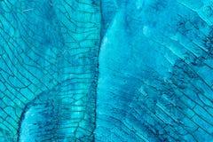Красочное голубое мультимедиа крася поверхностный крупный план макроса деталей стоковые изображения