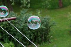 Красочное летание пузыря в воздухе над садом и пробуя мухой прочь Пузырь была созданной воздуходувкой пузыря в моей руке стоковое фото