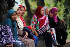 Красочное мусульманское hijab Стоковые Изображения