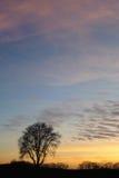 Красочное небо заходом солнца Стоковые Фотографии RF