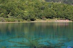 Красочное озеро в национальном парке Jiuzhaigou Сычуань Китая Стоковое фото RF