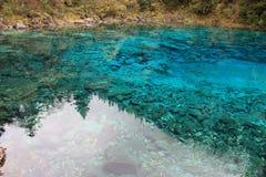 Красочное озеро в национальном парке Jiuzhaigou Сычуань Китая Стоковые Фото