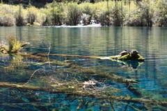 Красочное озеро в национальном парке Jiuzhaigou Стоковая Фотография RF