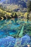 Красочное озеро в национальном парке Jiuzhaigou Стоковые Фото