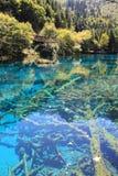 Красочное озеро в национальном парке Jiuzhaigou Стоковые Изображения