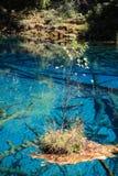 Красочное озеро в национальном парке Jiuzhaigou Стоковое Изображение RF