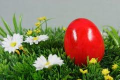 Красочное пасхальное яйцо Стоковое Фото
