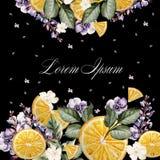 Красочное приглашение открытки или свадьбы акварели С цветками лаванды, ветреницами, и плодоовощами апельсина Стоковые Изображения RF