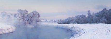 Красочное утро зимы Стоковое Изображение
