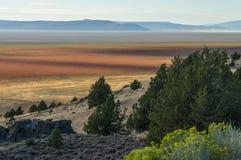 Красочное южное озеро гусын, Калифорния Стоковые Изображения