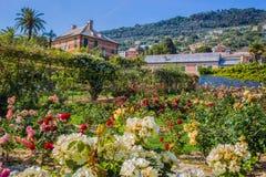 Красочное ` Il Roseto ` розария в Генуе Genova Nervi, внутреннем парке Генуи Nervi Groppallo, Италии стоковая фотография rf