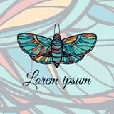 Красочной бабочка нарисованная рукой Логотип стиля Doodle Стоковые Изображения
