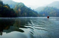 Красочно деревья и зеленое озеро Стоковая Фотография