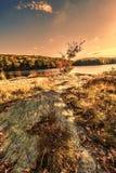 Красочные ландшафты пейзажа падения стоковое изображение rf