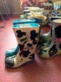 Красочные вазы ботинок Стоковое Изображение RF
