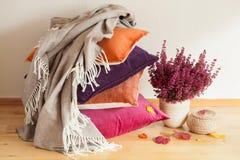 Красочные валики бросают уютные домашние лист цветка настроения осени Стоковые Изображения