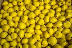 Красочные гаваиские шарики Стоковая Фотография RF