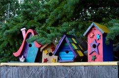 Красочные дома птицы в ряд! Стоковое Фото