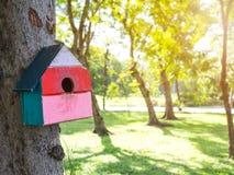 Красочные дома птицы в смертной казни через повешение парка на дереве, дом птицы были помещены на различные этапы лес birdhouse с Стоковые Фото
