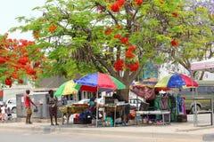 Красочные деревья пламени уличного рынка женщин, Африка Стоковое фото RF