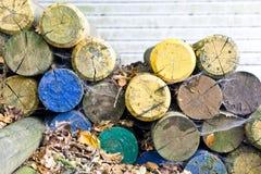 Красочные деревянные журналы Стоковые Фото