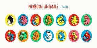 Красочные животные младенца шаржа иконы предпосылки легкие заменяют вектор тени прозрачный Стоковые Изображения