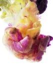 Красочные жидкости подводные Смешивание желтого цвета и пинка Стоковая Фотография RF