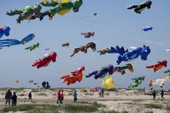 Красочные змеи дракона в воздухе Стоковое Фото