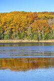 Красочные листья осени отраженные в пруде мочат, Норфолк, соединяются Стоковые Фотографии RF