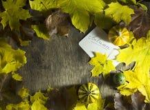 Красочные листья осени с тыквами на деревянной предпосылке Стоковая Фотография RF