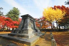 Красочные листья Стоковая Фотография