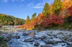 Красочные лист и река осени с голубым небом Стоковое Изображение RF