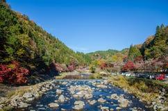 Красочные лист и река осени Стоковая Фотография