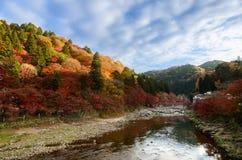 Красочные лист и река осени Стоковое Изображение RF