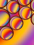 Красочные капельки масла в воде стоковые фото