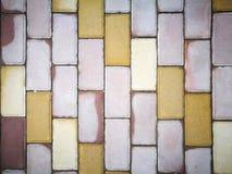 Красочные кирпичи после дождя Стоковая Фотография RF