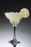 Красочные коктеили при лед украшенный с куском лимона Стоковое фото RF