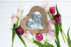 Красочные красивые тюльпаны и большое деревянное сердце на белом деревянном столе Валентинки, предпосылка весны иллюстрация штока